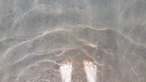 Wem diese Füße wohl gehören?