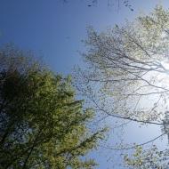 Und das Blau des Himmels erst ...