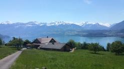Der Blick auf den Thuner See