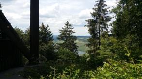 Der Blick aus dem Wald auf die Mosel