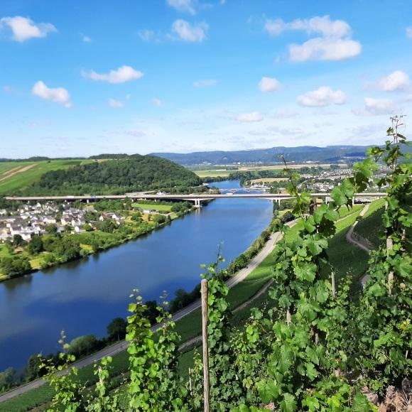 Blick Richtung Trier ... irgendwo da hinten